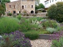 Bagno Vignoni in Tuscany. Stock Image