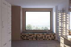 Bagno vuoto con una finestra, beige Fotografie Stock