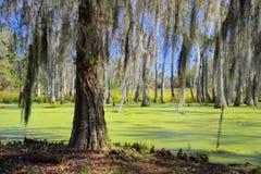Bagno w Charleston Południowa Karolina Obrazy Stock