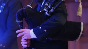 Bagpipe player plays musical instrument at the stage. Close up stock video