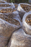 Bags of Autumn Leaves Stock Photography