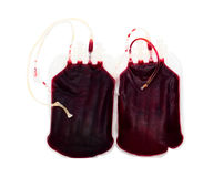 Bags of blood Stock Images