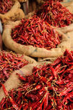 Bags of Chillis. Bags of Dried Chillis.  Kollam, Kerala, India Royalty Free Stock Image