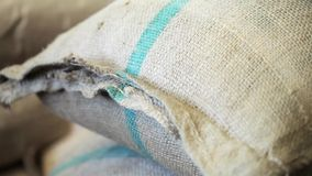 Bags with coffee grains in coffee factory. stock footage