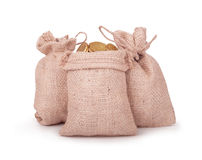 Bags with coins Royalty Free Stock Image