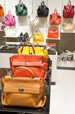 Bags Colection Stock Image