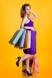 bags den gravida shoppingkvinnan för den härliga holdingen Royaltyfri Fotografi