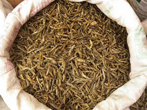 Bags of dried fish Stock Images