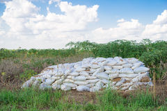 Bags of fertilizer placed in the land Stock Images