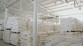 Bags with flour in warehouse of flour factory. Flour stock. Mill warehouse stock video footage
