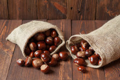 Bags of horse chestnuts. On a wooden table Royalty Free Stock Photos