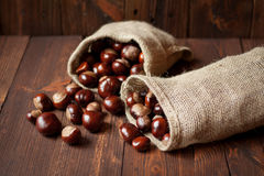Bags of horse chestnuts. On a wooden table Royalty Free Stock Photography