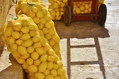 Bags of lemons casting shadows in stone alley Stock Images