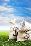 Bags full of money on grass Stock Photos