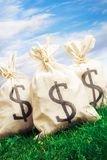 Bags full of money on grass Royalty Free Stock Image
