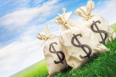 Bags full of money on grass Stock Photography