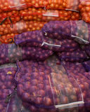 Bags of Onions royalty free stock images