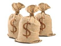 bags pengar Royaltyfria Bilder