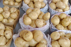 Bags of potatoes. Overhead view of bags and boxes of washed potatoes Royalty Free Stock Photos