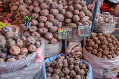 Bags of Potatoes. Arequipa, Peru - October 20, 2015: Bags of peruvian potatoes at San Camillo market Royalty Free Stock Image