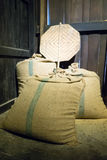 Bags rice Stock Images