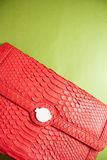 Bags of snakeskin. Snakeskin leather bag with closeup texture Stock Photos