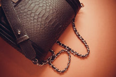 Bags of snakeskin. Snakeskin leather bag with closeup texture Royalty Free Stock Photos