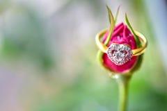 Bague à diamant avec la rose de rose Photos libres de droits