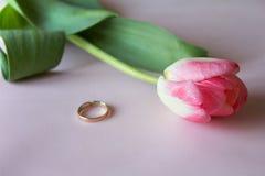 Bague de fiançailles avec la tulipe rose sur le fond rose Photographie stock libre de droits