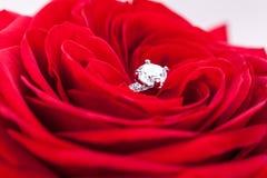 Bague de fiançailles de diamant au coeur d'une rose rouge Photos stock