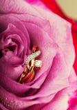 Bague de fiançailles de diamant d'or dans la belle rose de rose Photos libres de droits