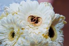 Bague de fiançailles et camomille très belles Images libres de droits