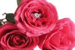 Bague de fiançailles et roses Images libres de droits