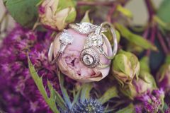 Bague de fiançailles de noces de diamant Image libre de droits