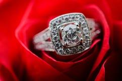 Bague de fiançailles sur la rose de rouge Photo libre de droits