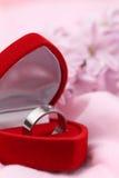 Bague de fiançailles titanique avec le diamant Images stock
