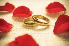 Bagues de fiançailles Photographie stock libre de droits