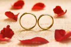 Bagues de fiançailles Image libre de droits