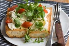 Baguette avec du mozzarella et la salade Image libre de droits