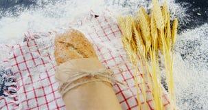 Baguette avvolte in carta, grani del grano e farina stock footage