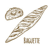 Baguette with bread slices. Hand drawn vector illustration Stock Photo