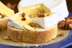Baguette με Camembert και το ξύλο καρυδιάς Στοκ Εικόνες