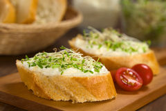 Baguette with Cream Cheese and Sprouts Royalty Free Stock Images