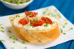 Baguette with Cream Cheese, Tomato and Sprouts Stock Images