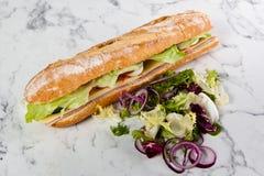 Baguette d'oignon de tomate d'oeufs de laitue de sandwich image libre de droits