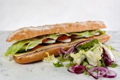 Baguette d'oignon de tomate d'oeufs de laitue de sandwich photo stock