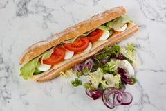 Baguette d'oignon de tomate d'oeufs de laitue de sandwich photographie stock libre de droits