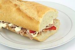 Baguette de sandwich à thon avec le paprika et la mayonnaise Photo libre de droits