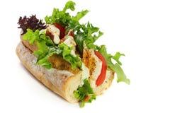 Baguette del pollo y de la ensalada Imagenes de archivo