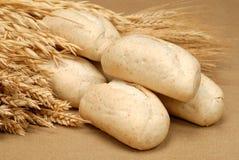Baguette et blé Images stock